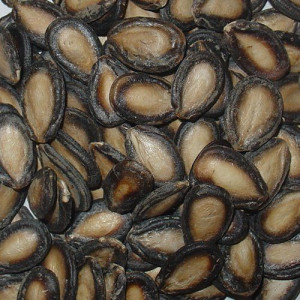 Dried Hulled Watermelon seeds for sale