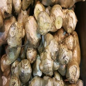 Fresh Ginger / Ginger Price In India / Wholesale Fresh Ginger