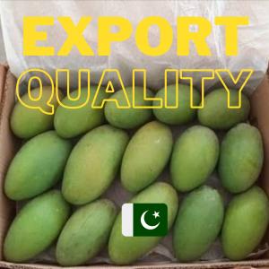 Pakistani Export Quality Mangoes