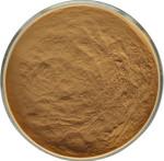 Burdock Root Extract Powder