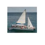 Catamaran Tourist Boat /Passenger Ship/Vessel