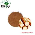 Herbal extract fresh Burdock extract, Organic Burdock root powder