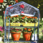 Factory Direct Sale Hot Poland Small Home Mini Garden House Mini Indoor small greenhouse
