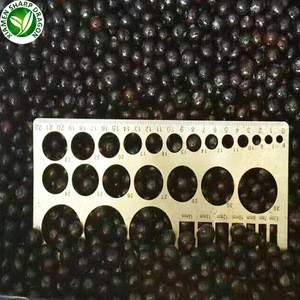 Import bulk berries  fruits prices frozen fresh blueberries iqf