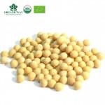 Top grade organic soybean