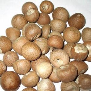 DRIED BETEL/ ARECA NUT - WHOLE/ SPLIT/ SLICE