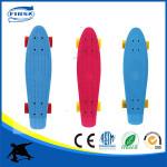 mini 22 inch complete blank deck plastic fish board cruiser skateboard with big LED wheel