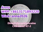 Dimethylpropylprocaine CAS:10012-47-2