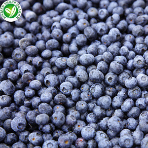 China Export Wholesale IQF Frozen Blueberry Fruit