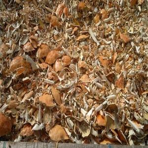 Crabshell/ broken dried crab shell
