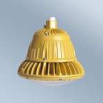 China Factory EX certificate 20W Explosion Proof LED Light