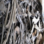 Soft Lead scrap