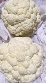 High quality and cheap price 2020 new crop fresh cauliflower