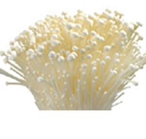 High Quality Bulk Dried White Snow Fungus Tremella Mushroom,  fresh enoki mushroom ,Detan Dried Tremella White Fungus