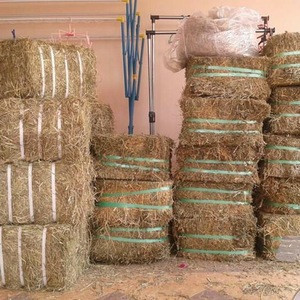 Top  Alfalfa Hay, Timothy Hay, Animal Feed for sale