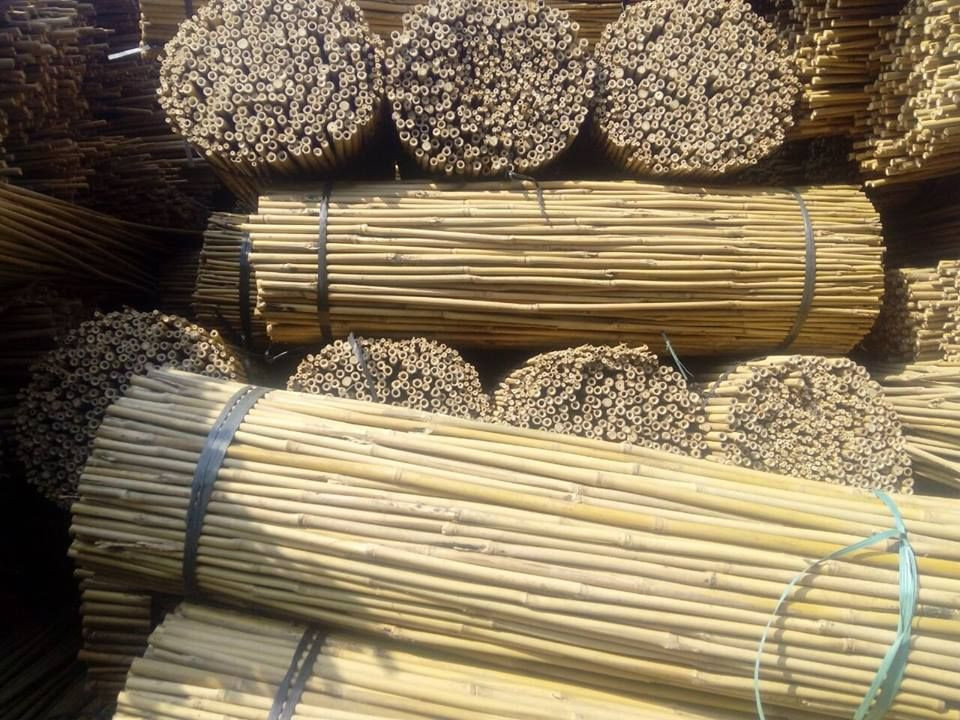 Import Wholesale Cheap Price Bamboo Poles from Vietnam from Vietnam