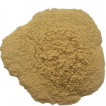 Normal Pure White Fresh Ginger Powder With High Quality