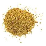Wholesale Price Natural fresh Bulk pure Bee Pollen
