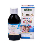 PROCBA Productive Cough Syrup for Children Vitamin C Honey Propolis Extract Echinacea Extract Honey Flavoured Syrups ...