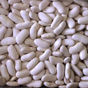 Organic White Kidney Beans / Canned White Kidney Beans