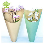 100% Biodegradable Home Fully Compostable Printed Folded Deep U--cut  Kraft Paper Flower Sleeves With Bottom Open